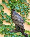 Бронзовая статуя орлана BrokInCZ