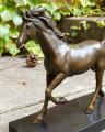Бронзовый конь лошадь