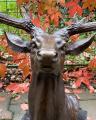 Голова оленя из бронзы BrokInCZ