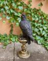 Бронзовая статуя орла на постаменте BrokInCZ
