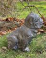 Большая статуя английского бульдога из MGO