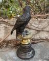 Статуя бронзового орла